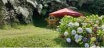 Imagen del anuncio con el ID: 9346596